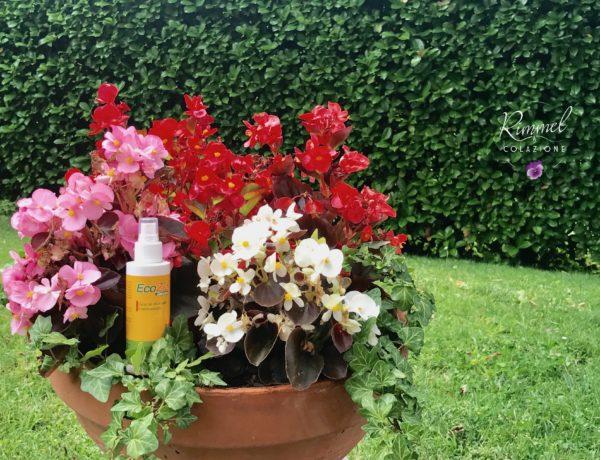 L'Olio di Neem Ecoziz contro le zanzare